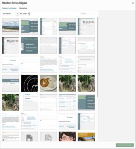 """Der Screenshot zeigt die Übersicht über die in der Mediathek vorhandenen Bilder, die angezeigt wird, wenn man den Button """"Datei hinzufügen"""" anklickt."""