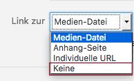 "Screenshot des Dropdown-Menüs mit Rahmen um ""Keine"""