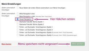 Screenshot von der Metabox mit den Menü-Einstellungen mit gesetztem Häkchen bei Hauptnavigation.