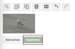 """""""Speichern"""" anklicken"""