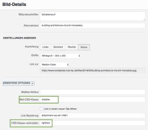 """CSS-Einstellungen in """"erweiterte Optionen"""" für Schattenwurf"""