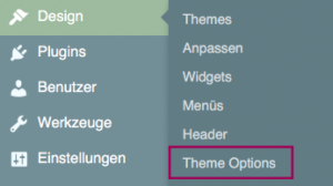Menüpunkt Theme Options