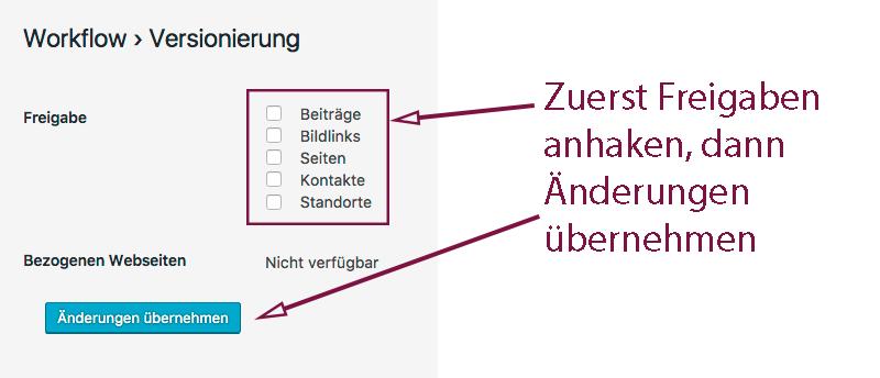 Screenshot der Möglichkeiten, Elemente zur Versionierung freizugeben. Die entsprechenden Elemente müssen ausgewählt werden.