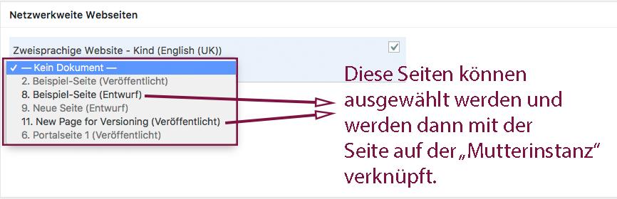 Der Screenshot zeigt das Dropdownmenü in der netzwerkweiten Versionierung der Mutterinstanz mit Hinweis auf die Seiten in der Kindinstanz, die mit dieser verknüpft werden können.