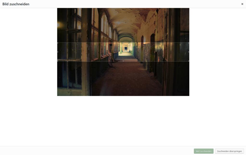 Ansicht aus der Mediathek eines Bildes, das eindeutig zu groß ist und auf dem ein dem Banner entsprechender Ausschnitt hell herausgehoben ist.