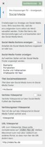 Screenshot des Bereichs für Anpassungen zu Social Media im Customizer
